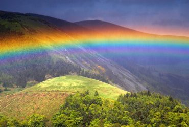 The Rainbow effect – Red as a Beetroot.