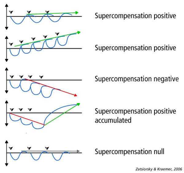 supercompensation-curve_scenario