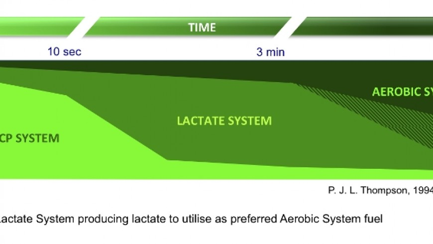 Reasons to profile your lactate kinetics