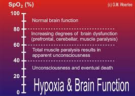 hypoxia_scale