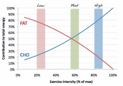 Fat_Carb_percent_max