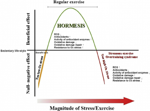 hormesis-and-exercise-regular-exercise-elicits-hormesis-reduces-oxidative